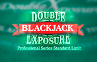 игровой аппарат Double Exposure Blackjack Pro Series